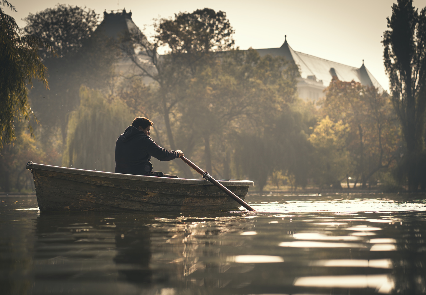 Solitude by Mirel Holban