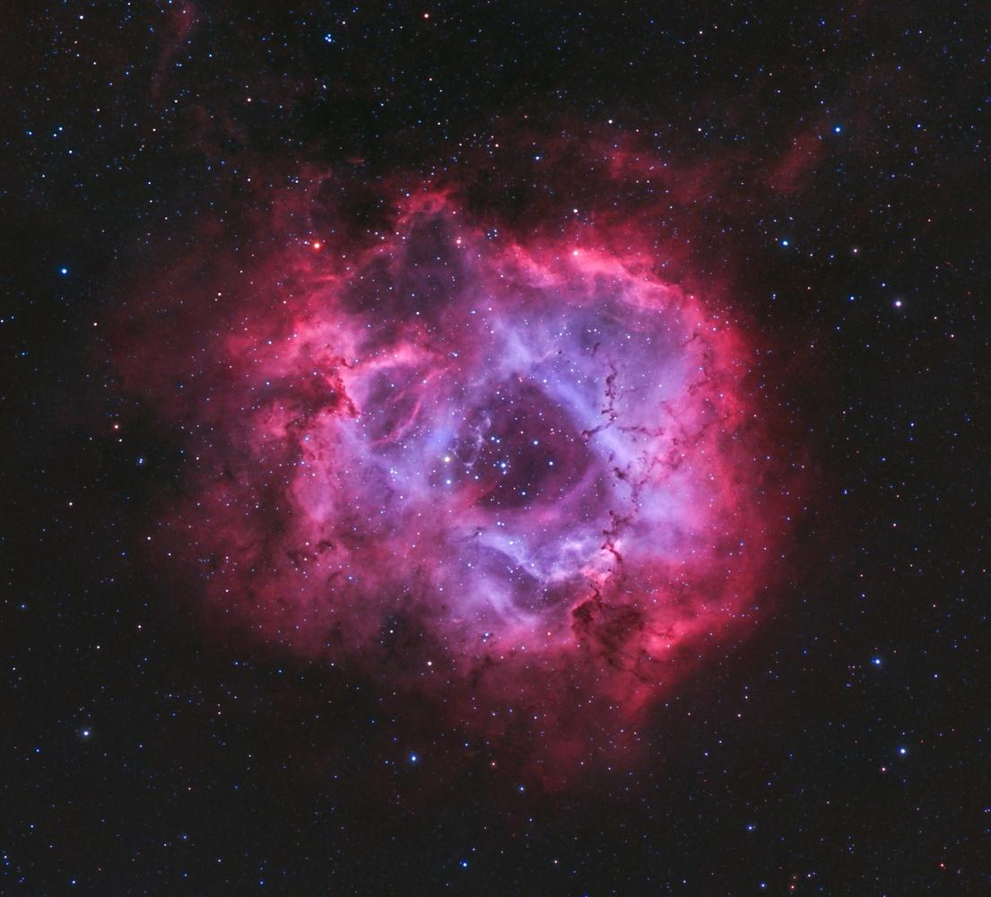 Rosette Nebula in HaOIIIRGB by Christopher Scott