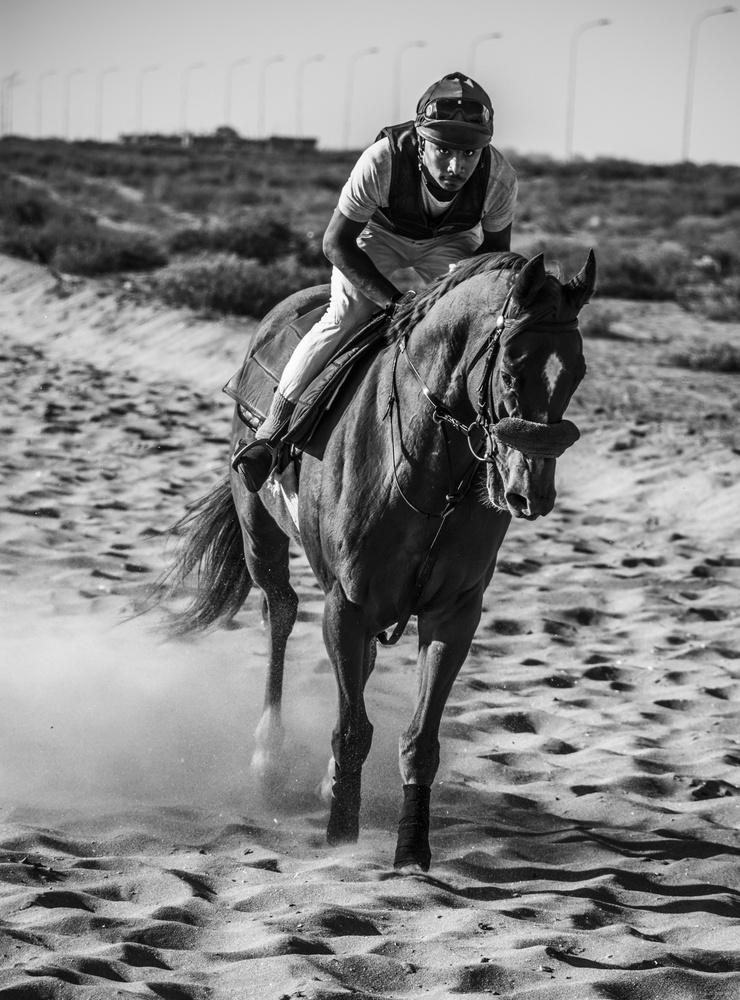 Horse Rider by Snehit Kalluru