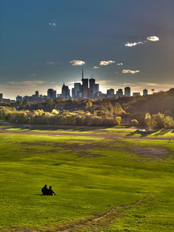 Toronto Landscape by Alex Chiu