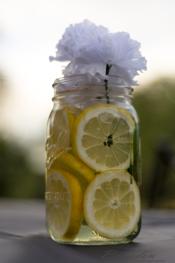 Life's hands out lemons by Cody Bragdon
