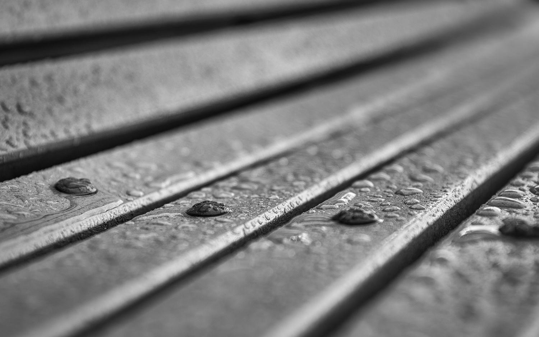 After rain by Patrick Dumas