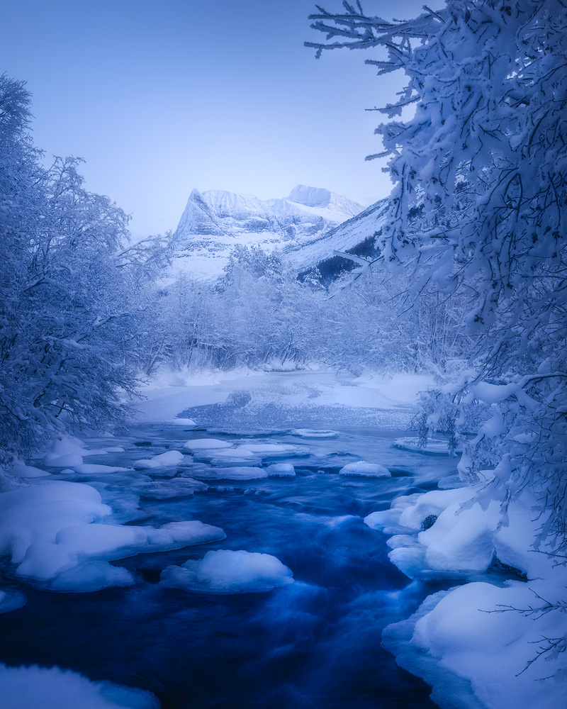 Frozen wonderland by Fredrik Strømme