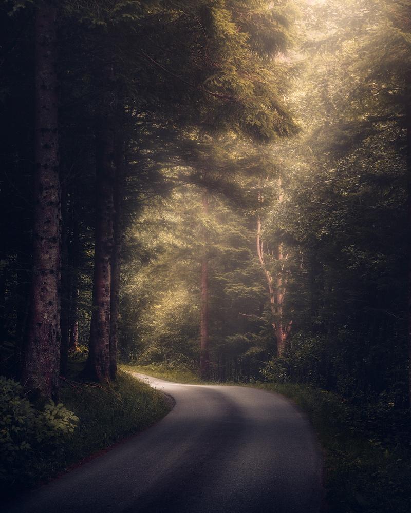 Chasing the light by Fredrik Strømme