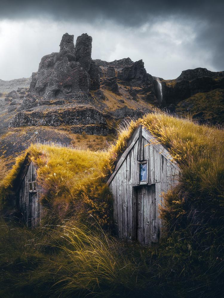 Overgrown by Fredrik Strømme