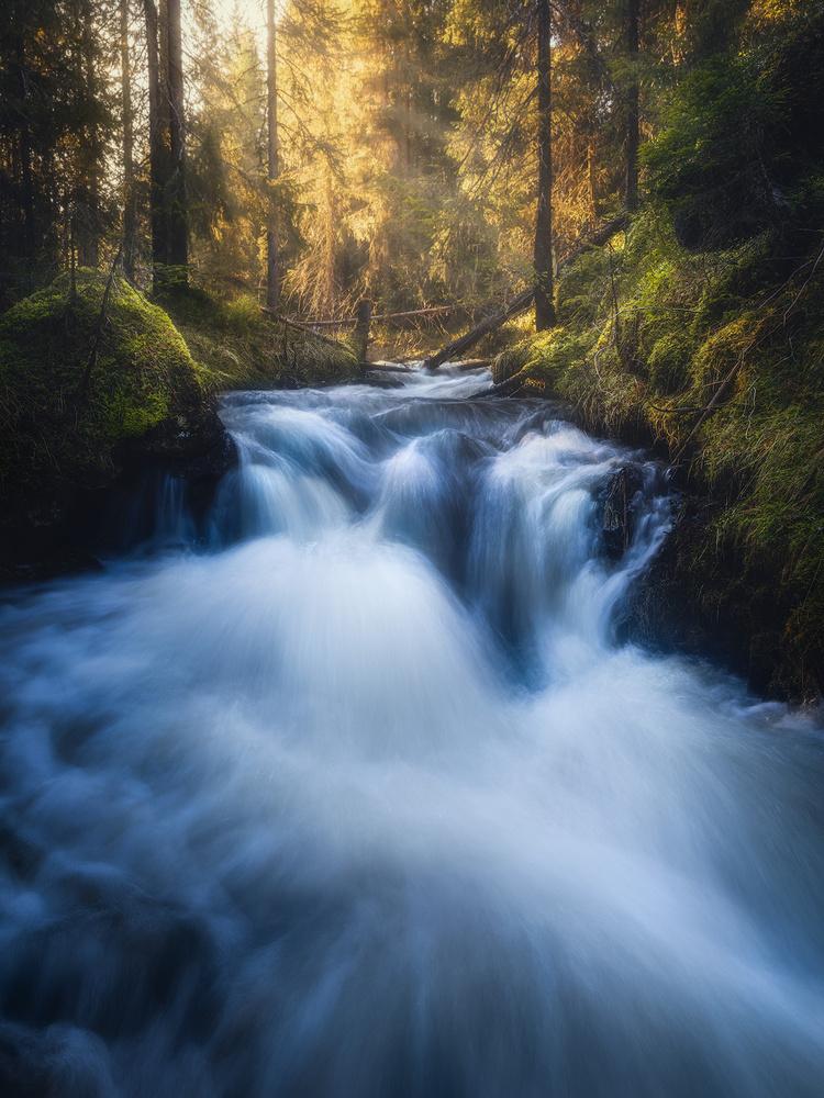 Spring creek by Fredrik Strømme