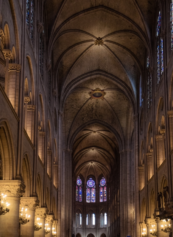 Notre Dame Cathedral by Liam Hammersley