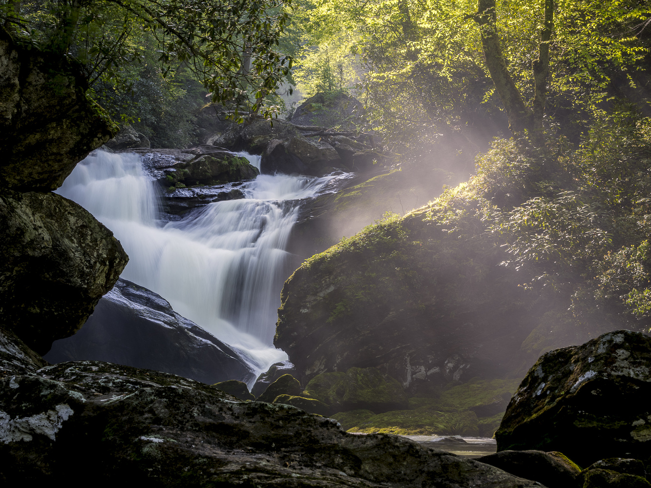 Secret of North Carolina by Andrew Lockwood