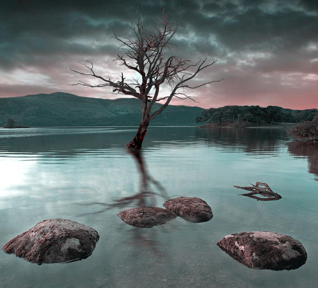 The last hope by Nizar Hezhaz