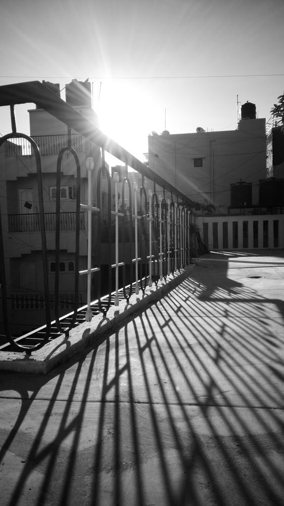 The morning light. by Aljo Antony