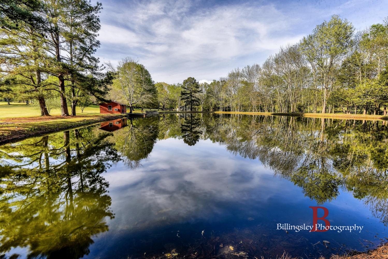Reflecting Alabama Pond by Cliff Billingsley