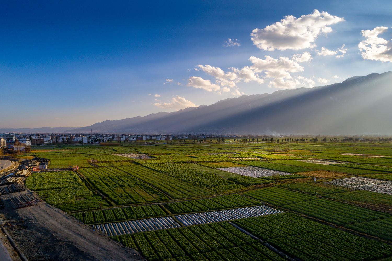 Sunshine of Dali by Zhefeng Mao