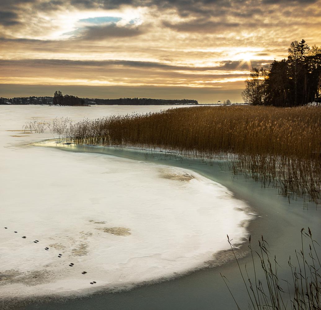 Winter morning by Ville Saarinen