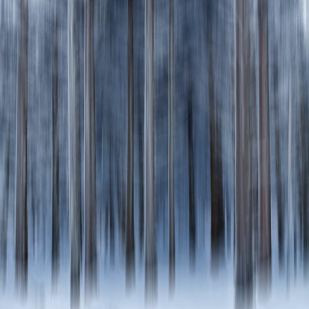 Winter ICM by Geoffrey Gilson