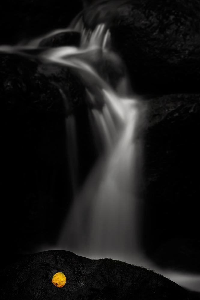 The fall by Geoffrey Gilson