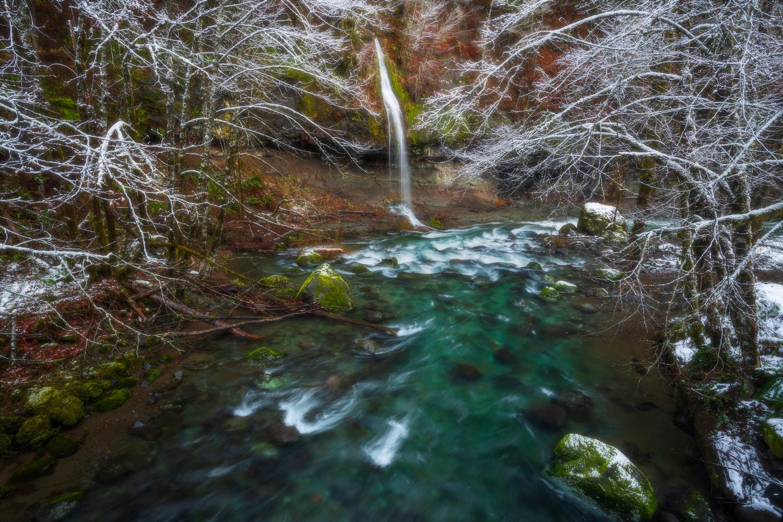 Winter Fairy by Daniel Gomez