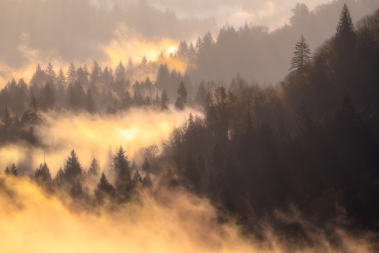 Warmth of the Sun by Daniel Gomez