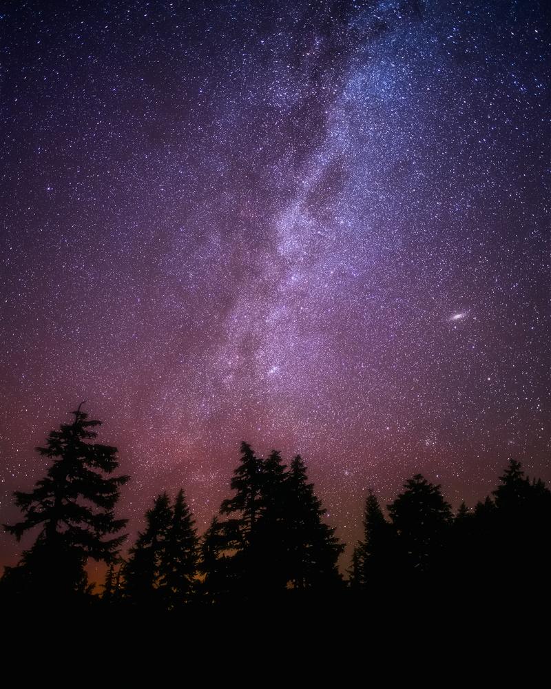 M31 by Daniel Gomez