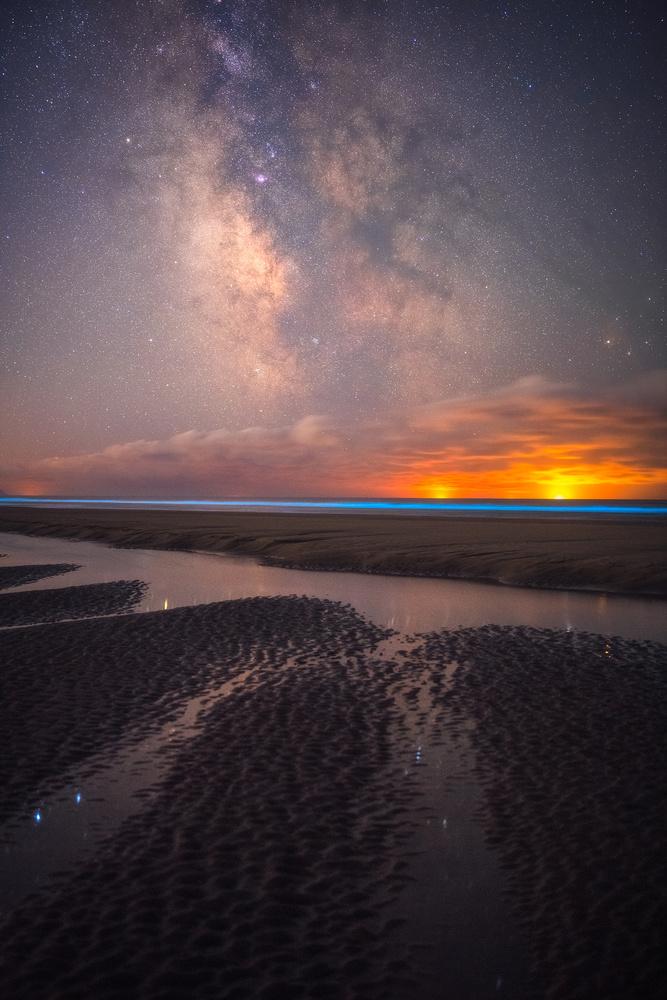 Bioluminescence on the Oregon Coast by Daniel Gomez