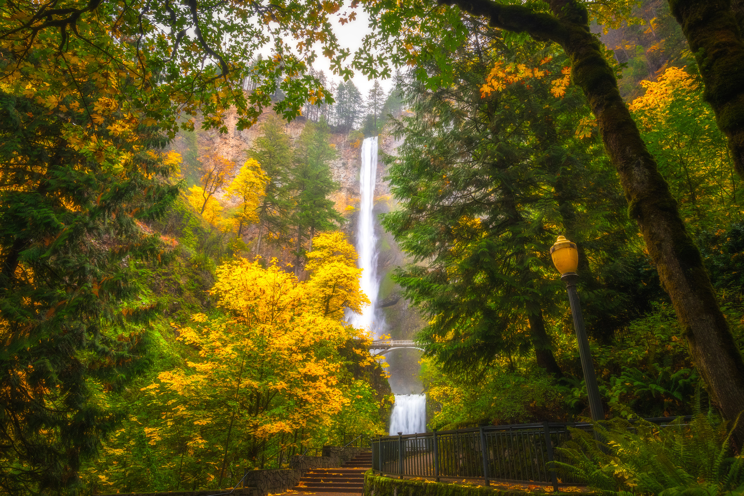 Queen of the Columbia River Gorge by Daniel Gomez