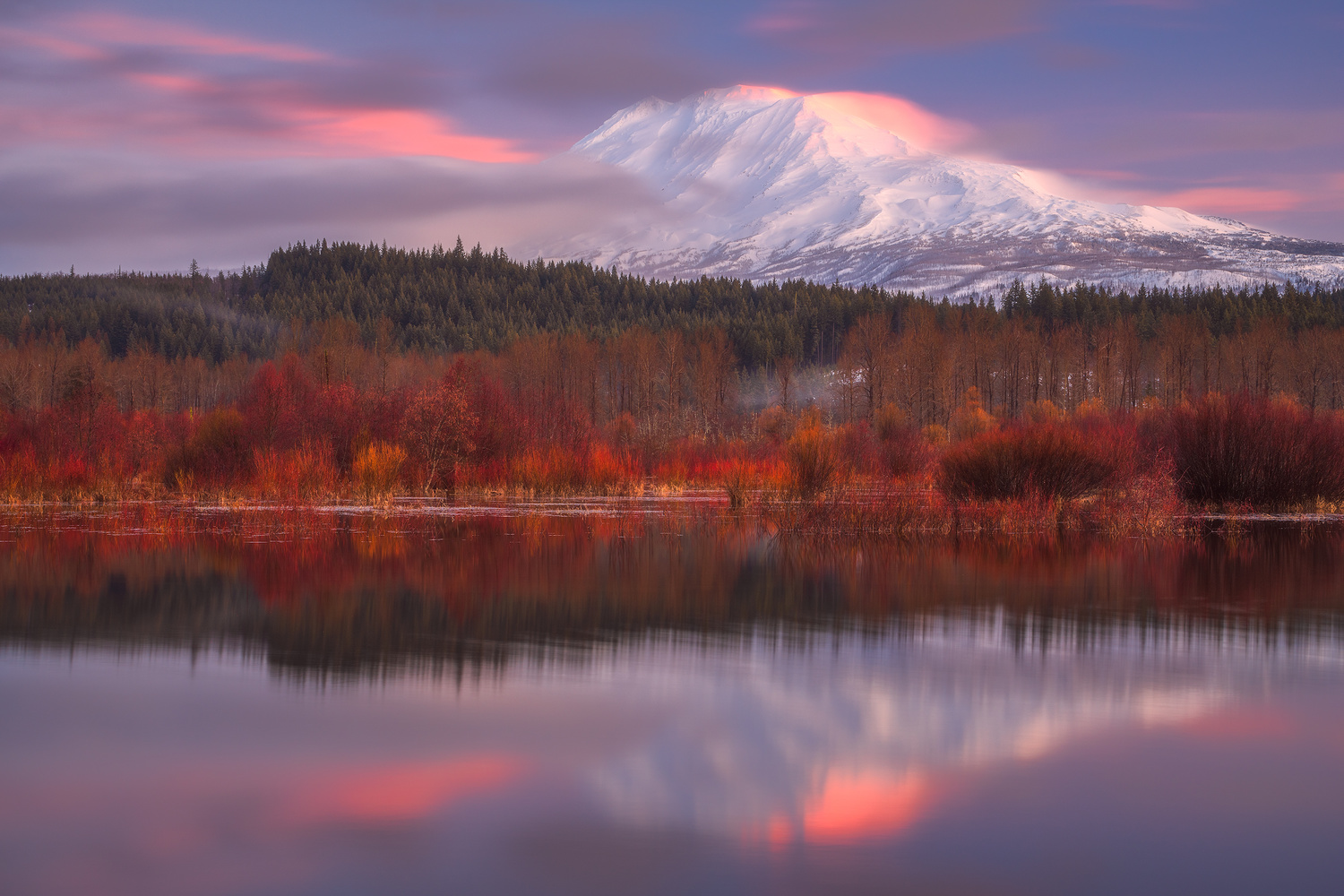 Fall Colors and Fresh Snow by Daniel Gomez