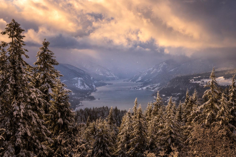Snow Day by Daniel Gomez
