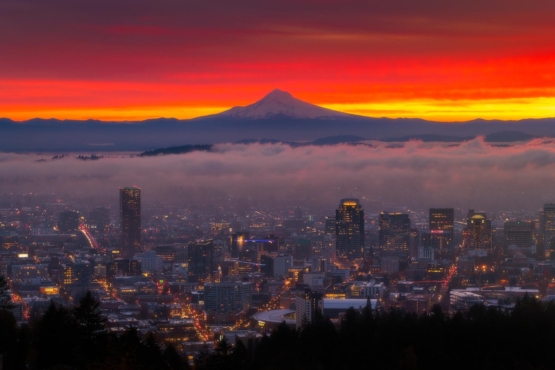 City Dreaming by Daniel Gomez