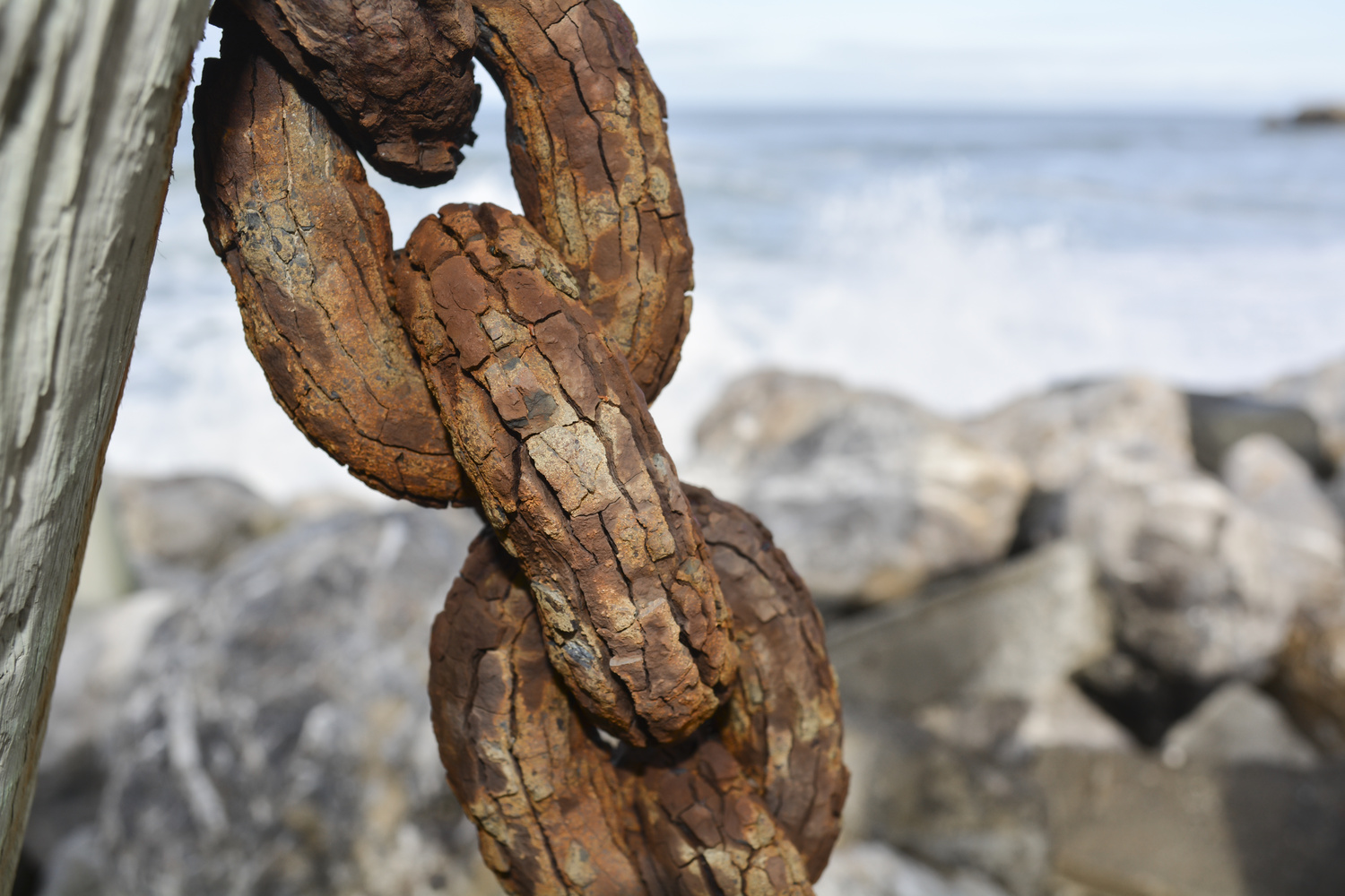Rust With A Side Of Chain by Dan Grayum