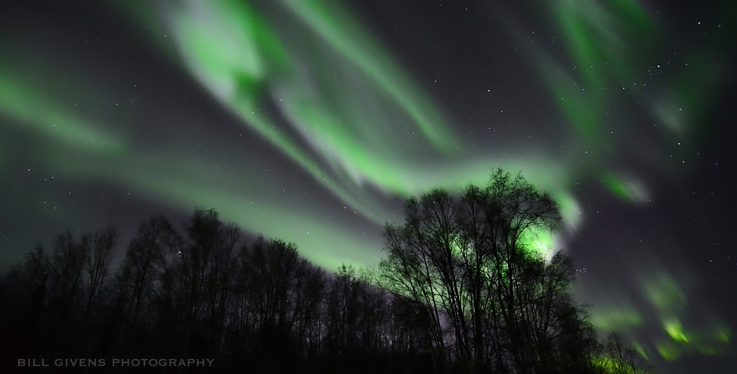Aurora in Fairbank, Alaska by William Givens