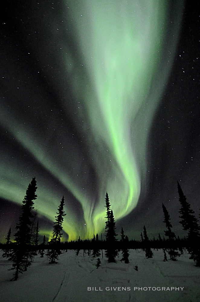 Alaska Aurora by William Givens