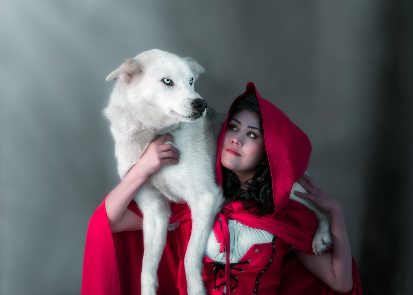 Little Red Riding  Hood and the Wolf by Jan Eide