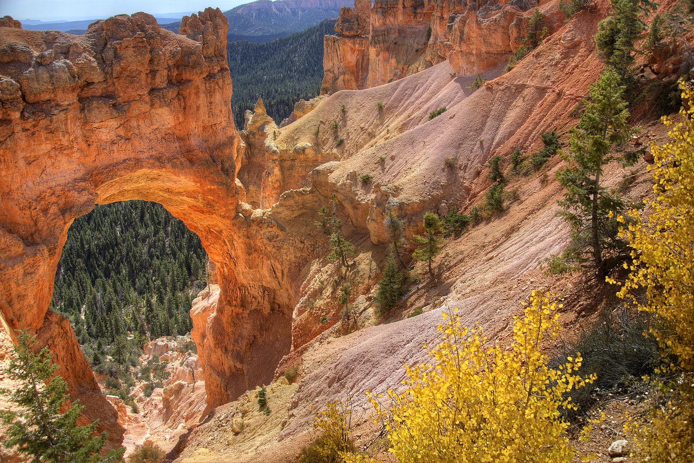 Natural Bridge by William Lipscomb