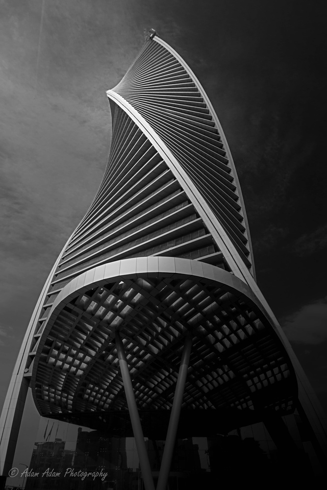 The Twisted Tower by Adam Adam