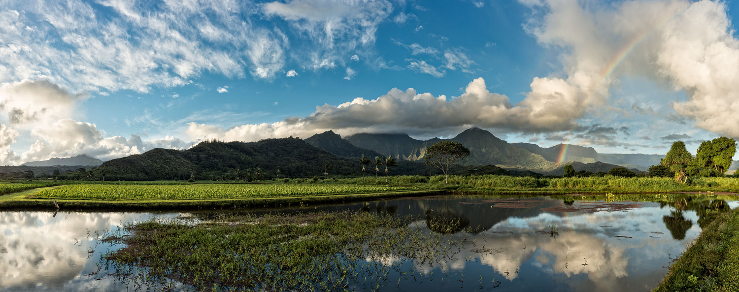 Hanalei Valley (pano) by Hudson Henry