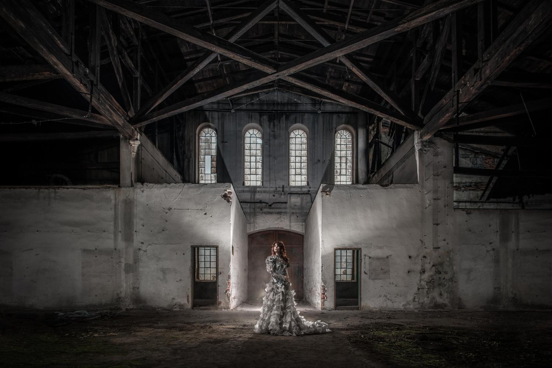 Queen by Dawid Galinski