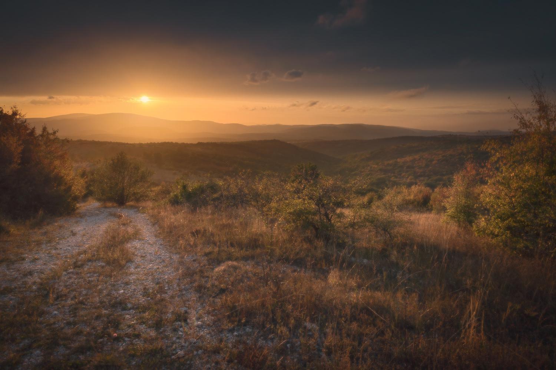 Exploration by Radisa Zivkovic