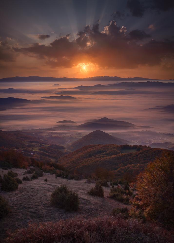 Autumn rhapsody by Radisa Zivkovic