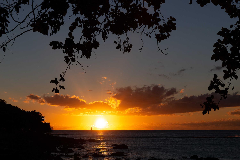 Winter sunset by BERNARD THOMAS