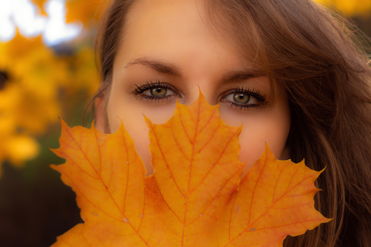 Autumn Beauty by Thomas Gehrke