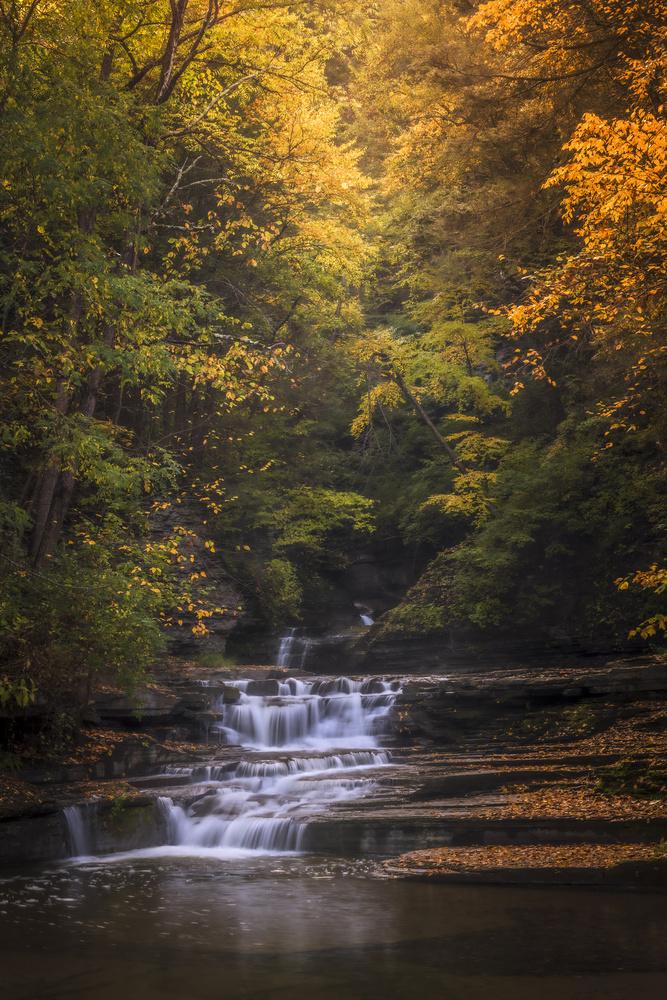 Autumn's Light Falling by Andrew Bendin