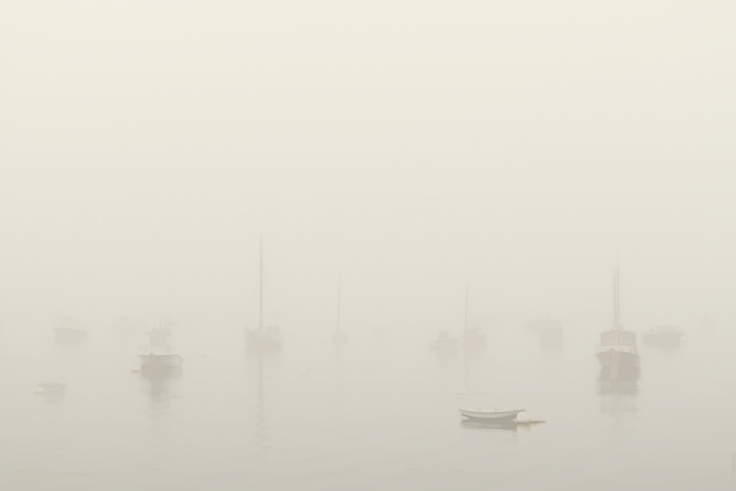 Foggy morning by Alan Brown