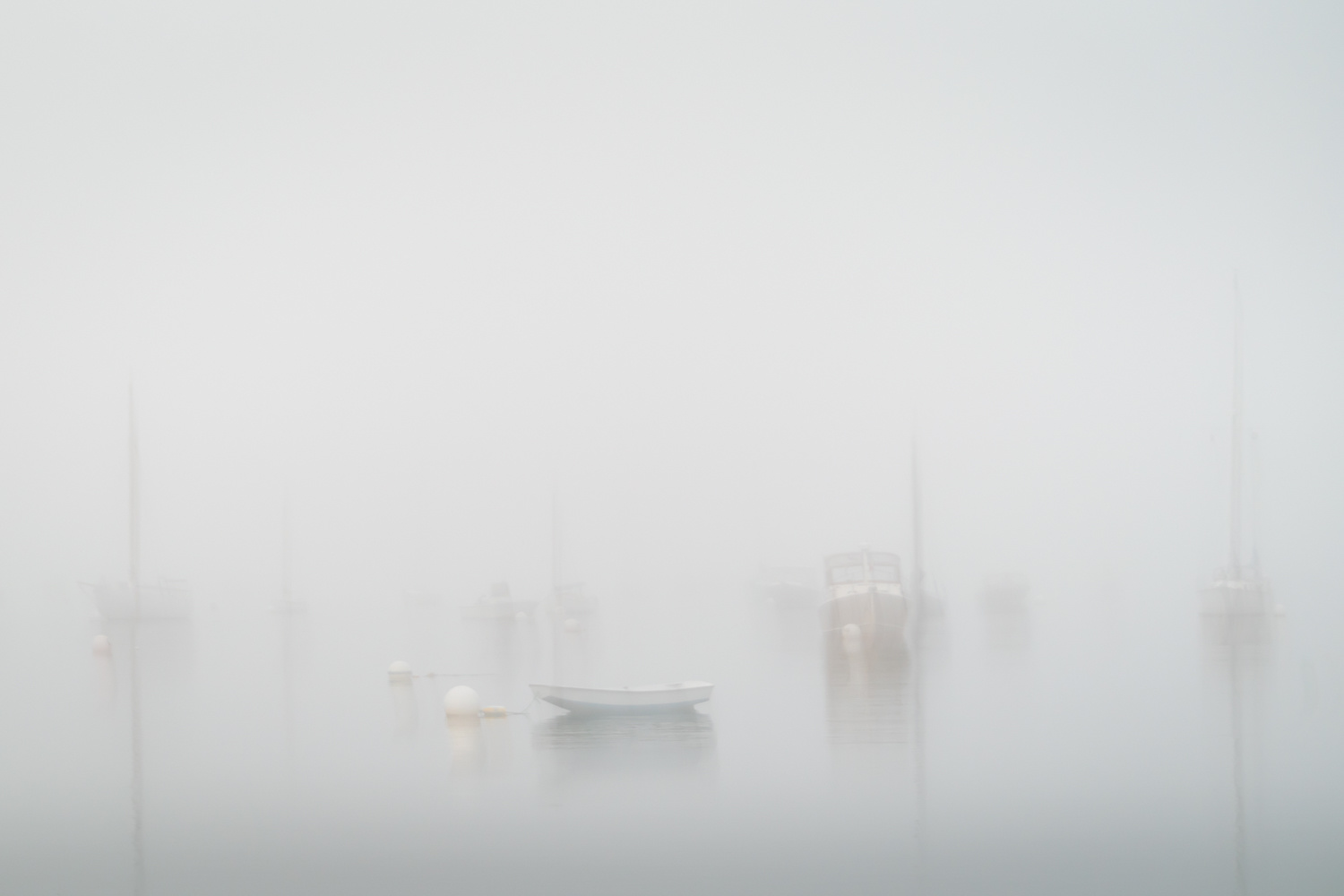 Caressed by morning fog by Alan Brown