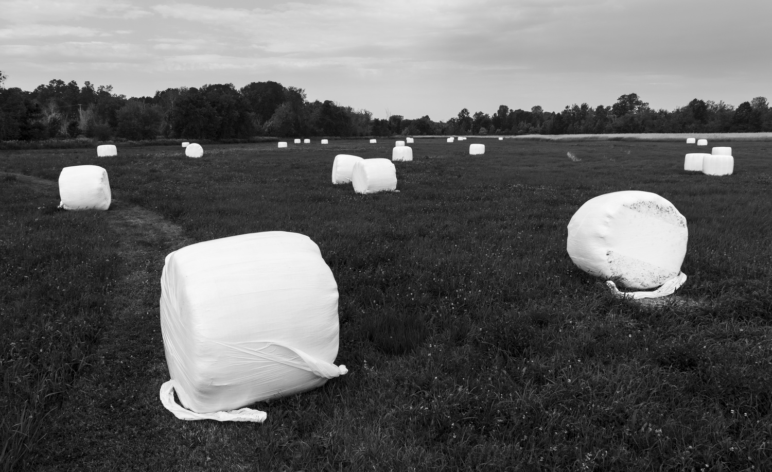 Hay Bales study #1 by Alan Brown