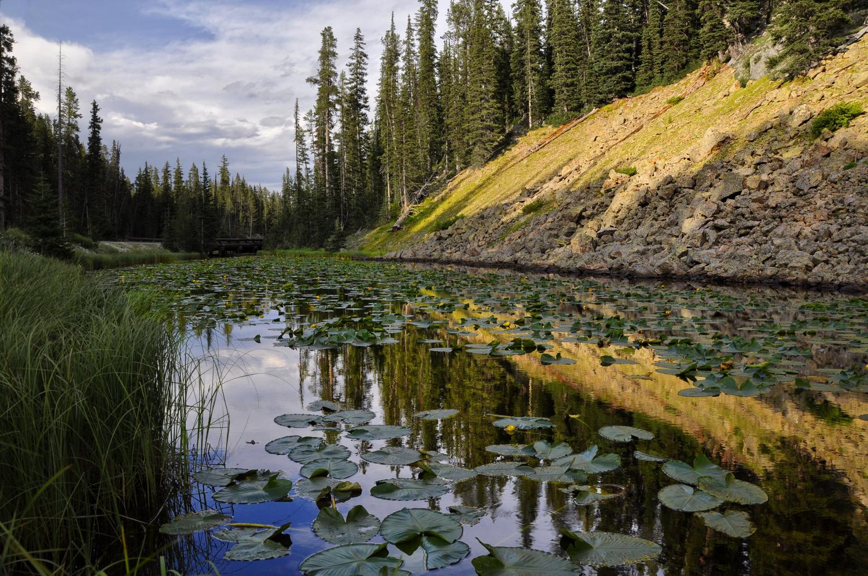 Isa Lake, Yellowstone by Rob Hemphill