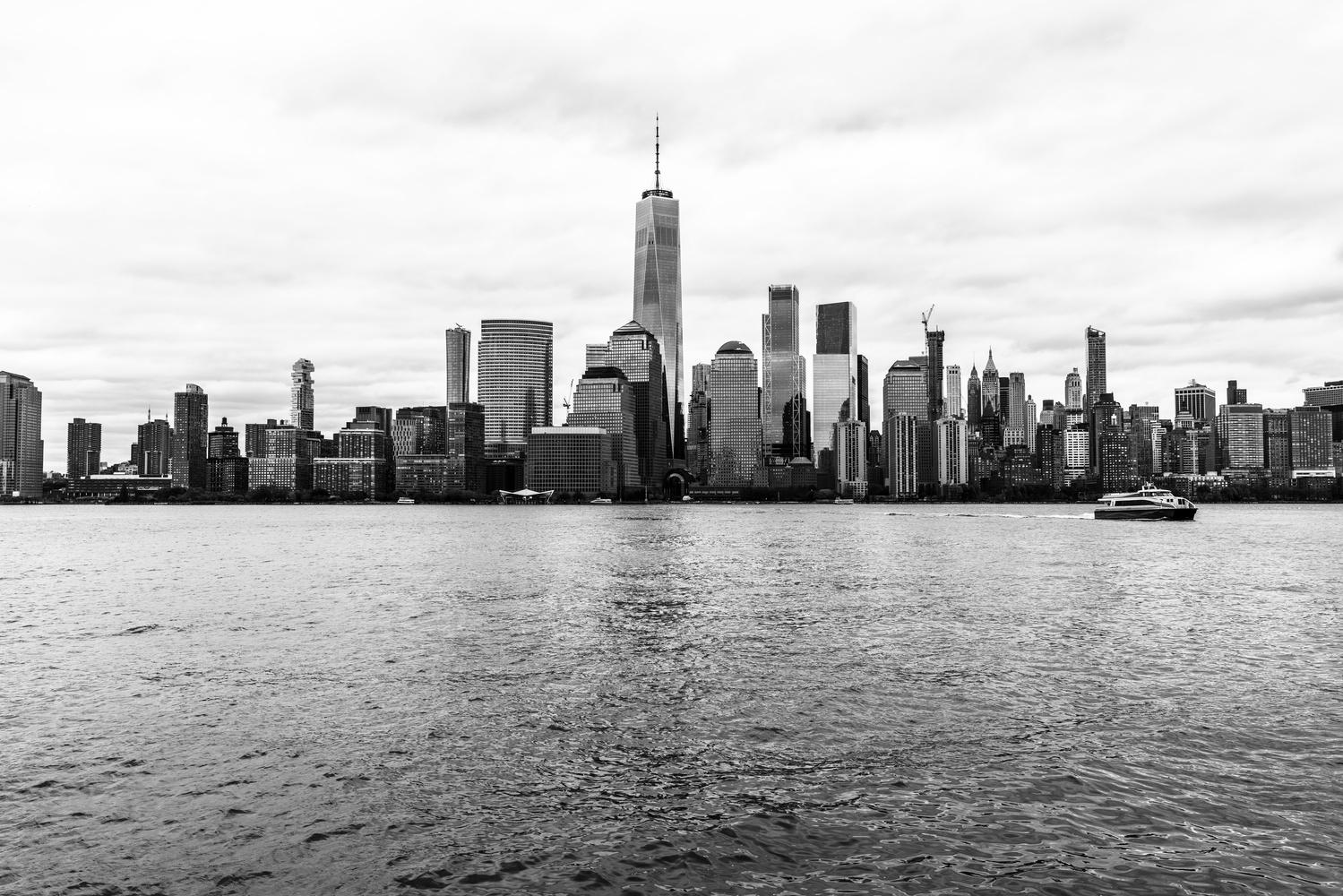 Lower Manhattan Skyline by Teri Dashfield