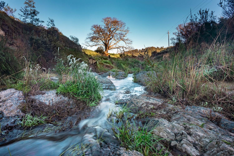 Bath River in Caledon by Charl Folscher