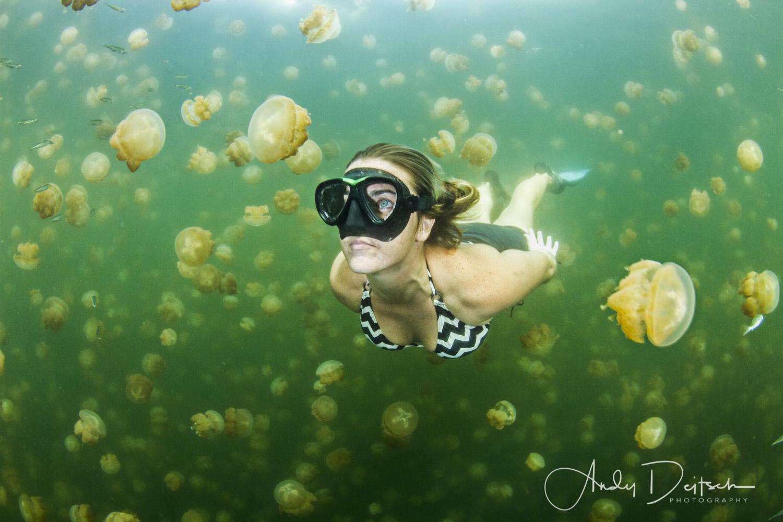 Jellyfish Lake by Andy Deitsch