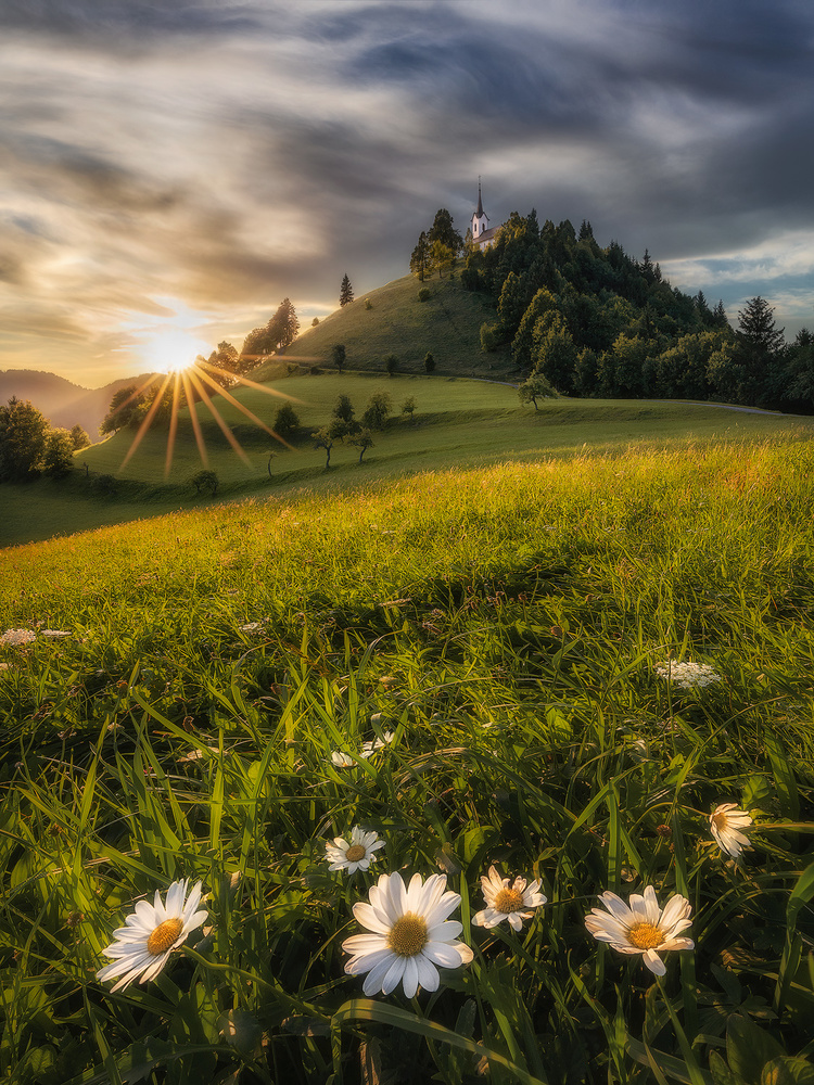 Last light by Michele Buttazzoni