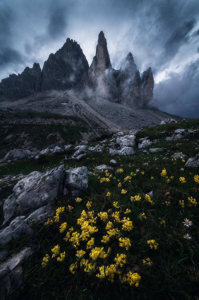 The dark side by Michele Buttazzoni