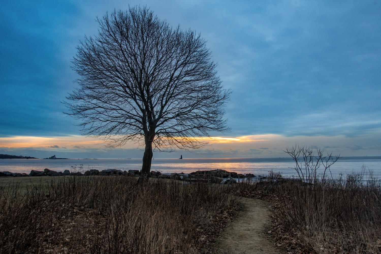 New Castle Common's Ocean Path by Steve Shannon